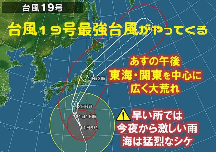 台風19号からメダカを守る!!台風対策!!