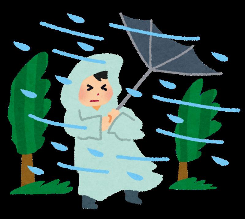 久々の大雨