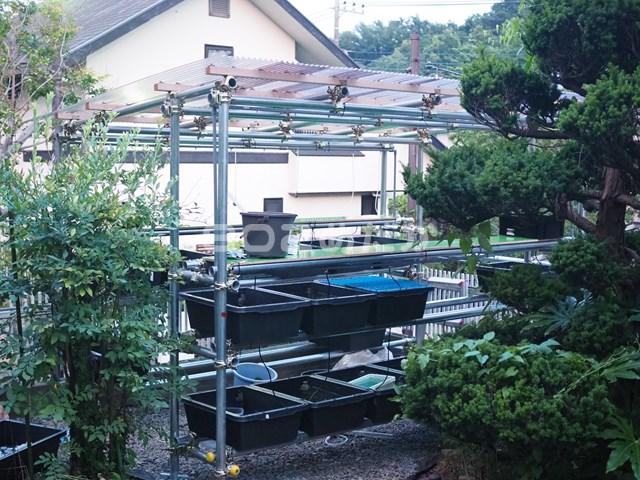 メダカ屋根付き棚の飼育場を単管パイプでDIY